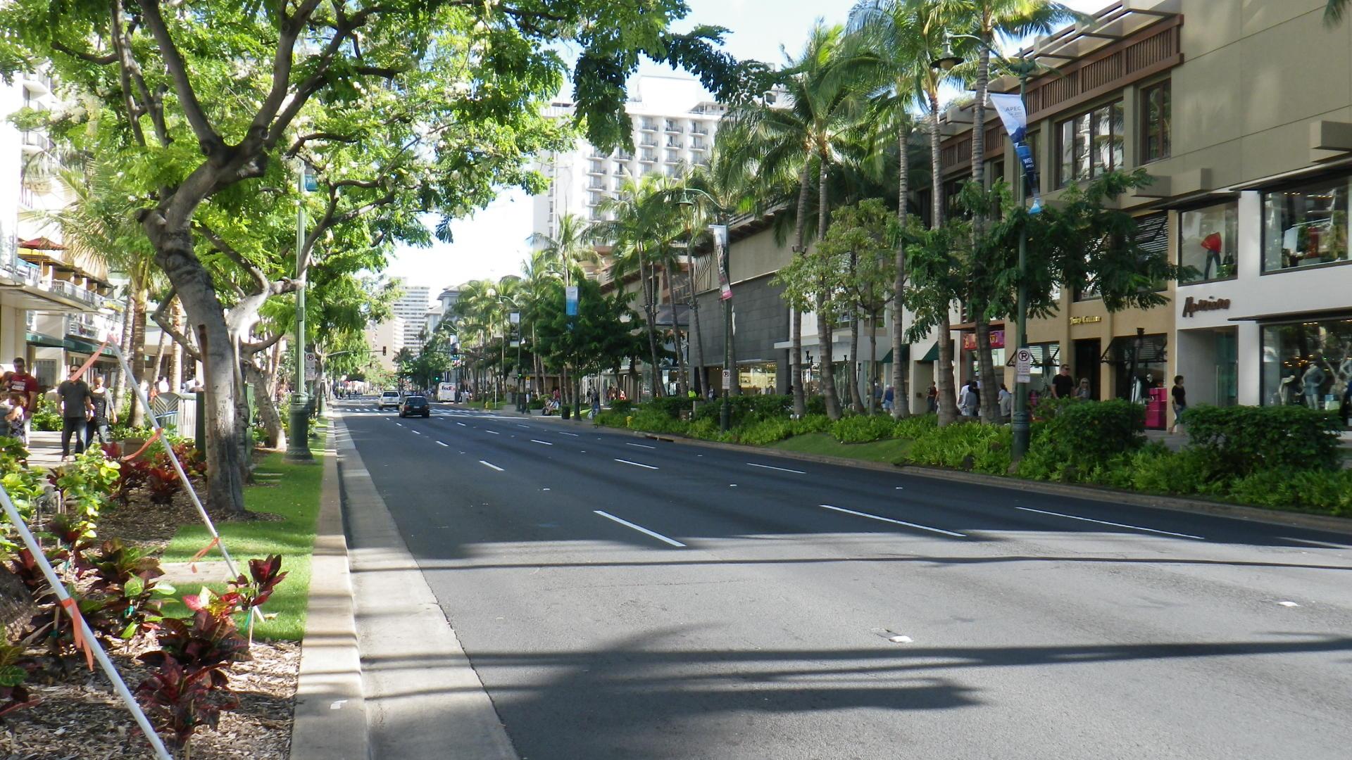 APEC期間のカラカウア通りの交通...